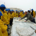 Carrara 2012 082
